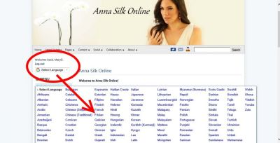 Updated the theme template to add a new login/log out link and installed the Google Website Translator plugin at: https://afansite.net/anna-silk/